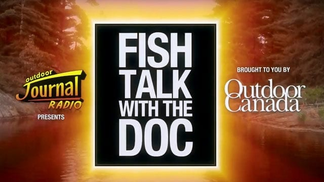 Fish Talk - In Praise of Power