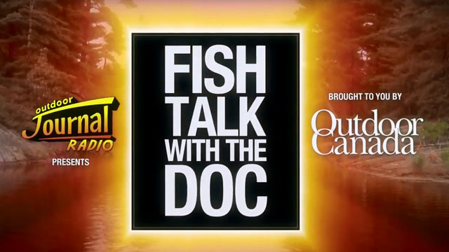 Fish Talk – Some Do, Most Don't