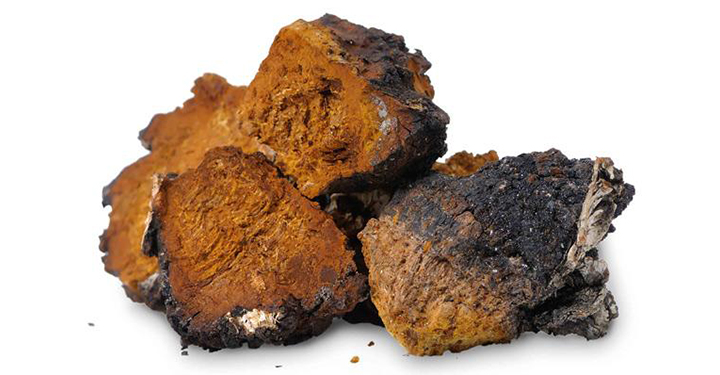 Chaga Health and Wellness – August 10, 2019