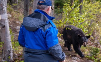 The Bear Facts: Ontario Proposes to Reopen the Spring Bear Hunt