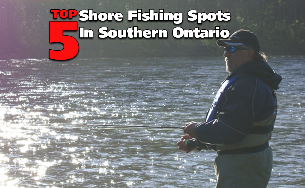 Shore Fishing: Top 5 Spots in Southern Ontario