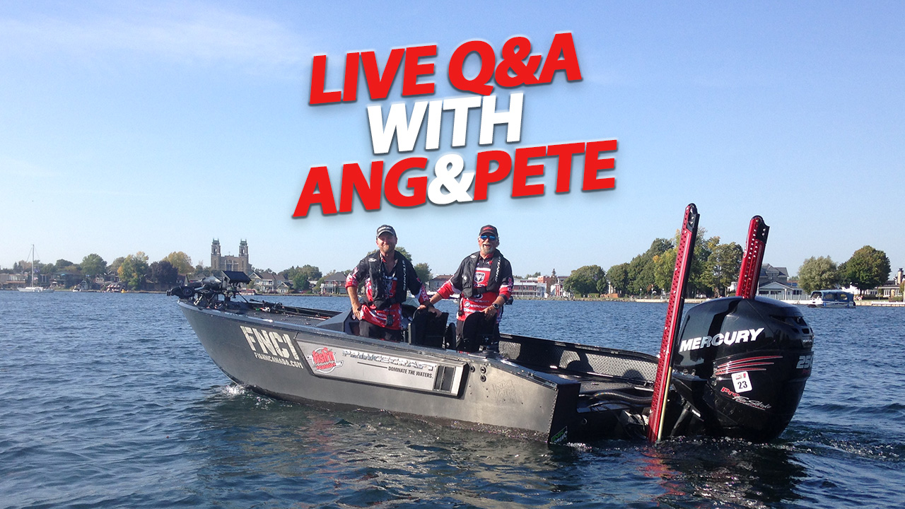 Live Q&A with Ang and Pete
