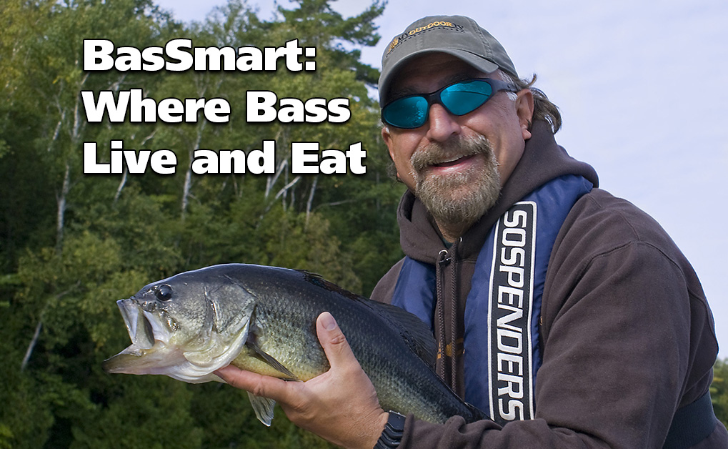 Where Bass Live and Eat - (BasSmart - Part 2)