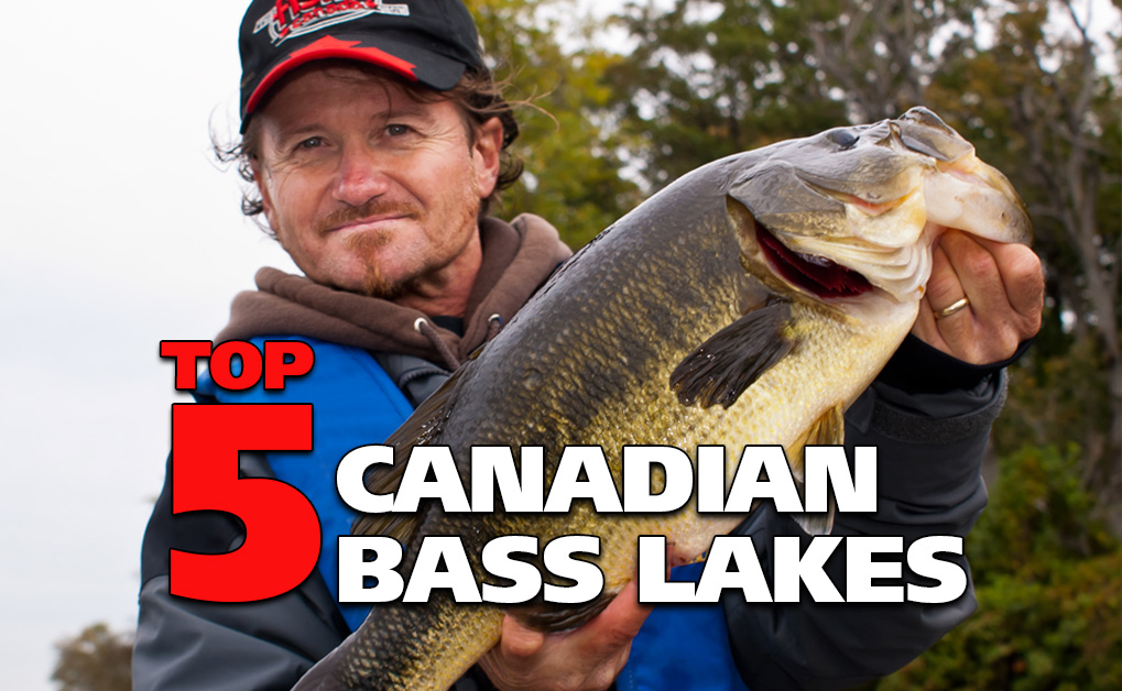 Top 5 Canadian Bass Lakes