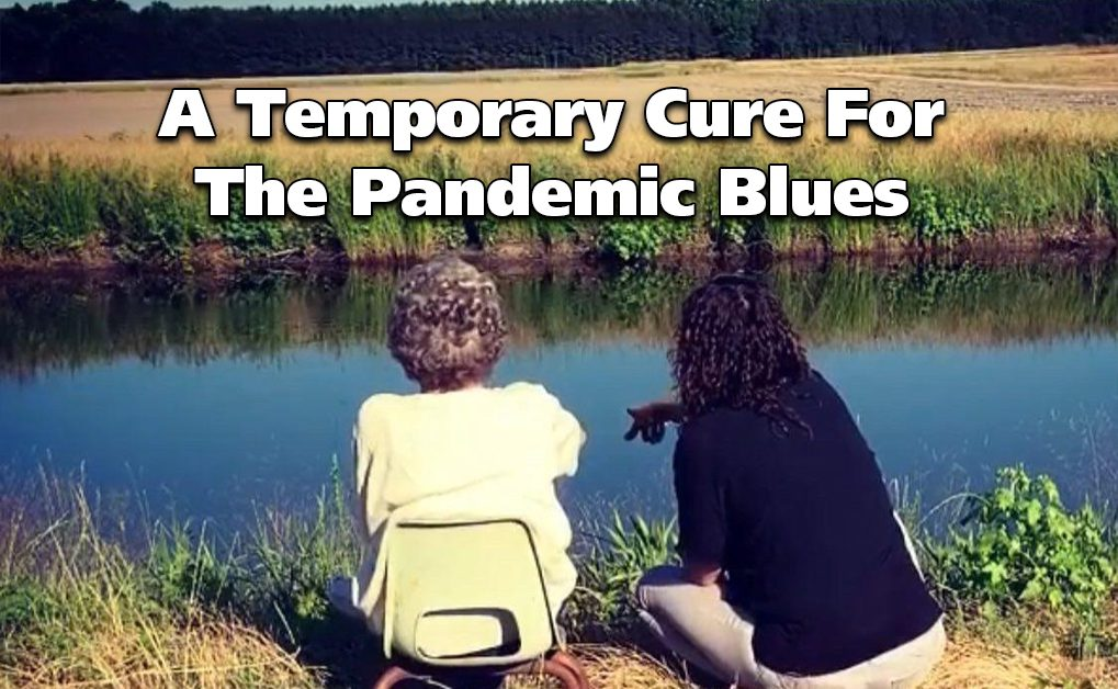 Cure for the Pandemic Blues