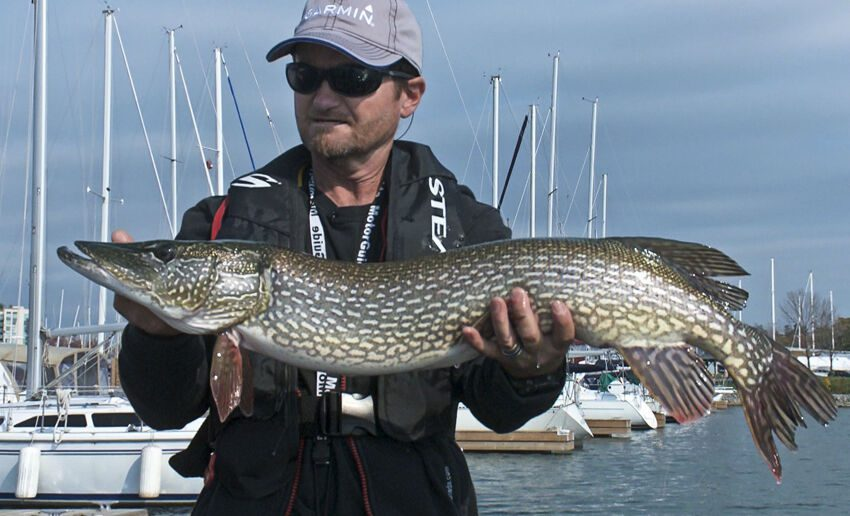 Pete with a Whitby Harbour Pike.