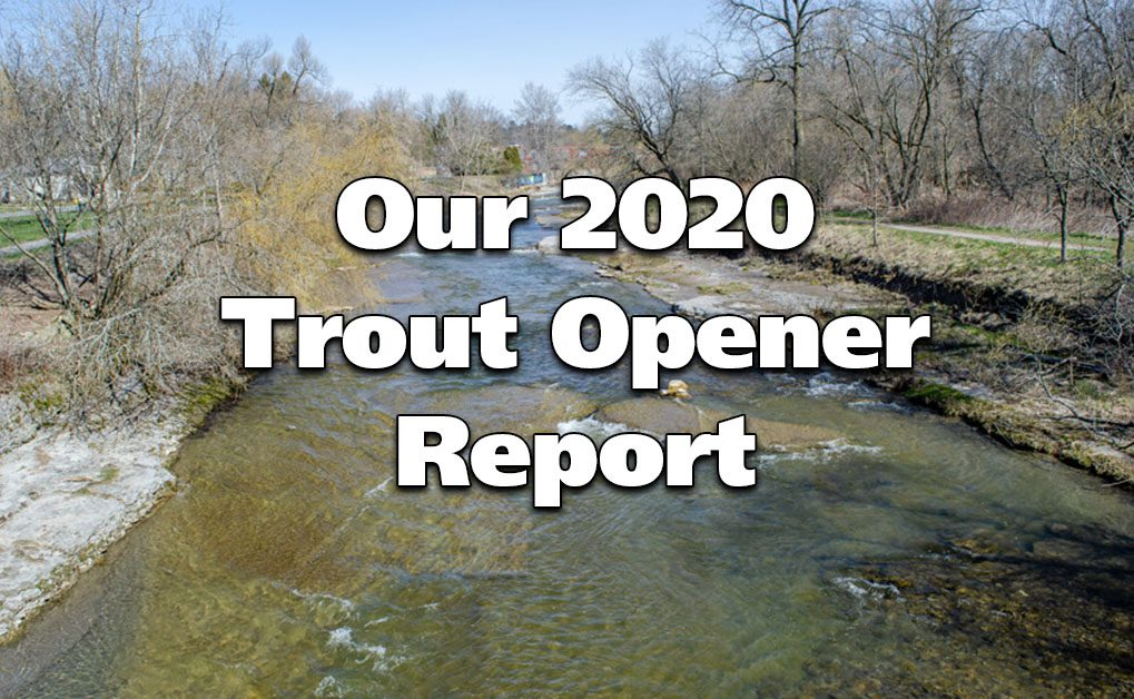 2020 Trout Opener
